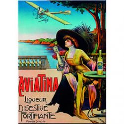 Carte Métal Liqueur Aviatina 15x21 cm