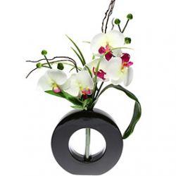 Composition Florale Orchidée Vase Céramique