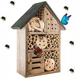 Maison à Insectes