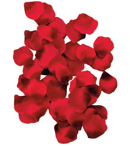 100 p tales de roses. Black Bedroom Furniture Sets. Home Design Ideas