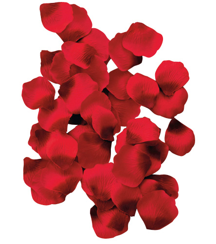 100 p tales de roses - Petale de rose comestible ...