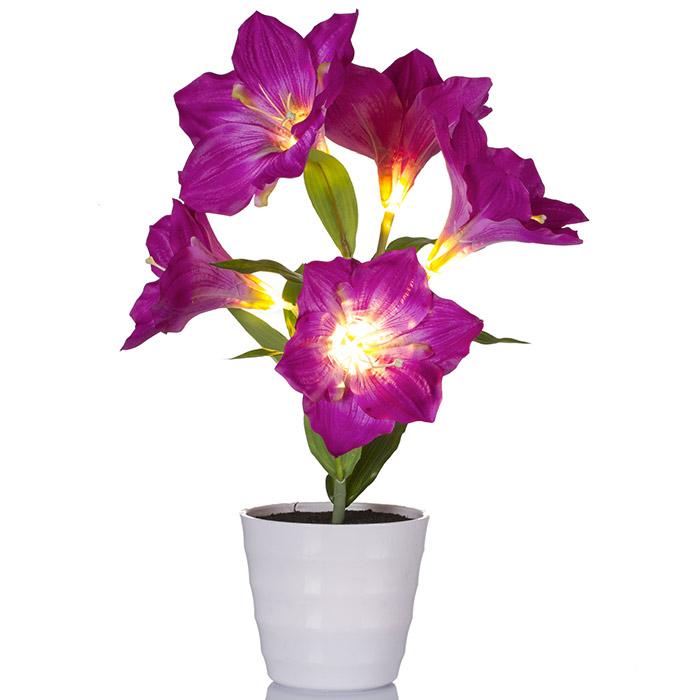 Plante fleur artificielle amaryllis lumineux 5 led for Plante lumineuse