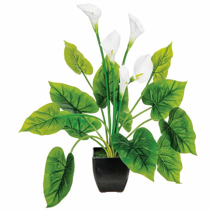 Plante artificielle arum avec fleurs artificielles blanches for Plante artificielle