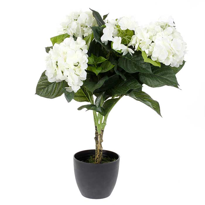 Plante artificielle hortensia fleurs blanches pot 60 cm de for Belle plante artificielle
