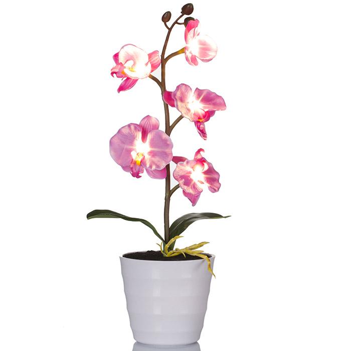 plante artificielle orchid e lumineuse led. Black Bedroom Furniture Sets. Home Design Ideas