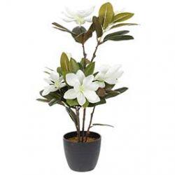 Plante Artificielle Magnolia avec Pot