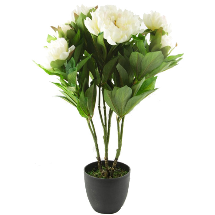 Plante fleurs artificielles pivoine rose ou blanc for Plante artificielle