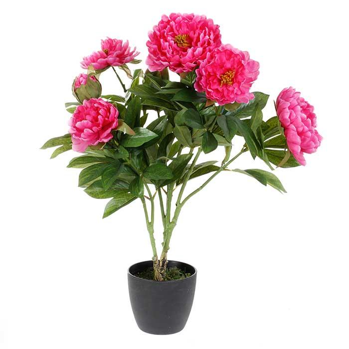Plante fleurs artificielles pivoine rose ou blanc - Plante a fleurs roses ...