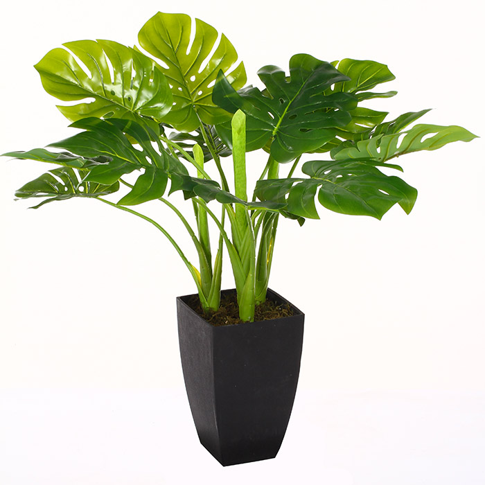 Plante verte artificielle plus vraie que nature for Plante maison