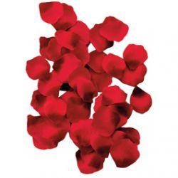 100 pétales de Roses